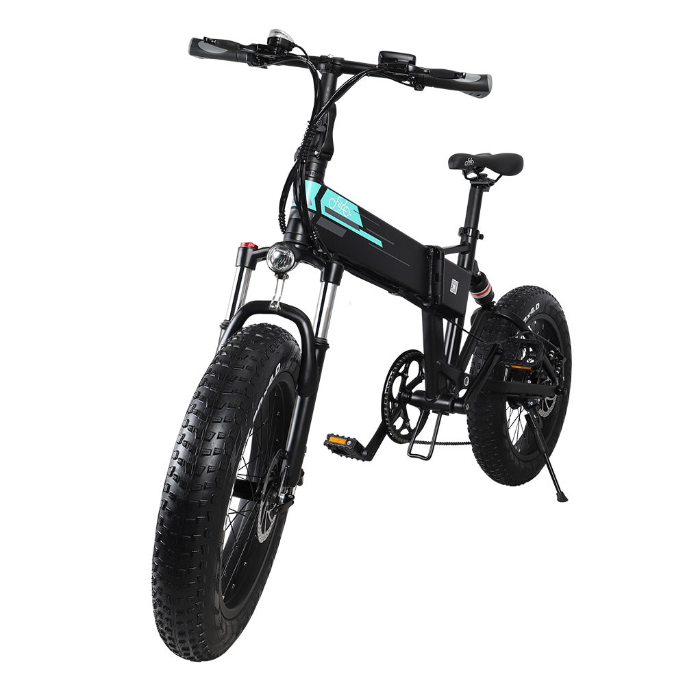 Fiido M1 - Fat Bike Electric Folding Bike Full Suspension 250W