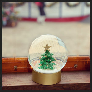 Store Snow Globes