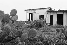 Load image into Gallery viewer, Casa y Cactus by Kathan
