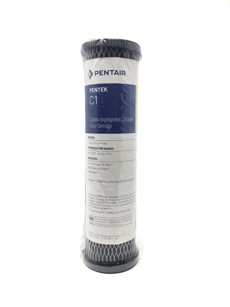 W5CIP PENTAIR WATER FILTER