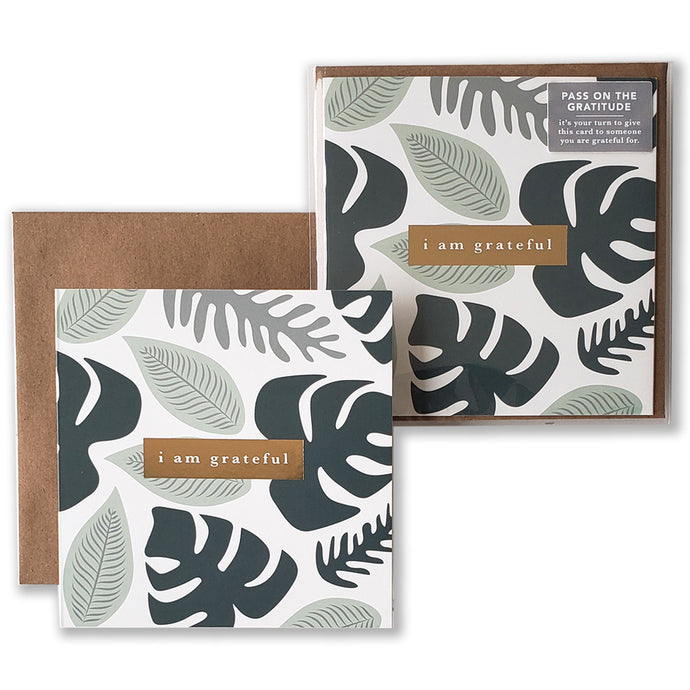 Rainforest Gratitude Cards - Maylay Co.