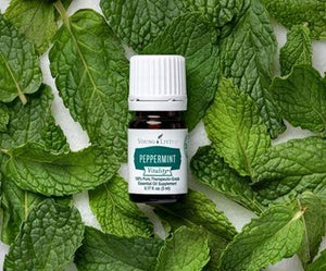 Peppermint Vitality™ Young Living™ Essential Oil Blend - 5 ml
