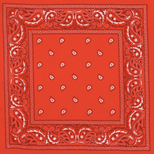 Load image into Gallery viewer, Paisley Bandana (Available in Black, Red, White, & Gray)