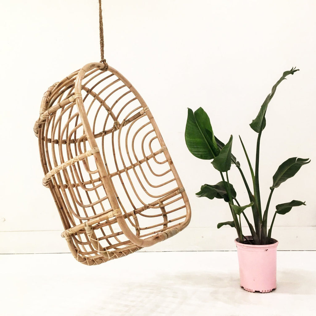 Nest Rattan Hanging Chair
