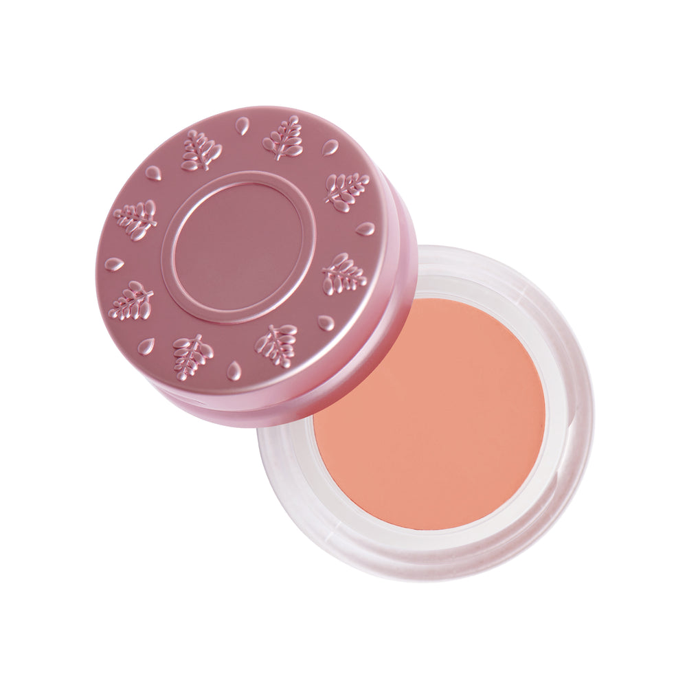 The Ultimate Multi-Use Creme Color Pretty Baby