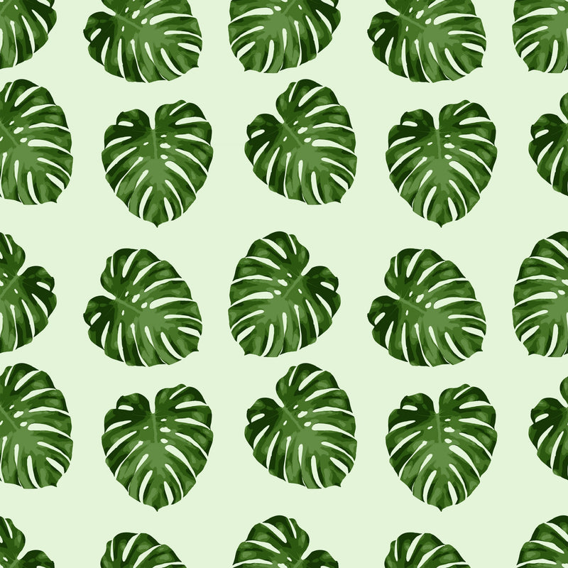 Monstera Leaf Pattern Lively Root