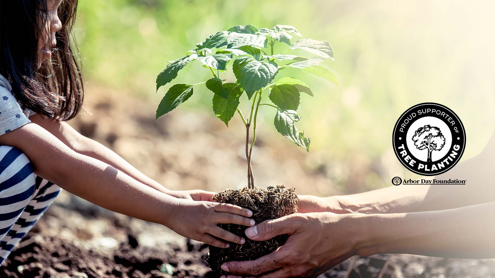 https://www.livelyroot.com/pages/arbor-day-partnership