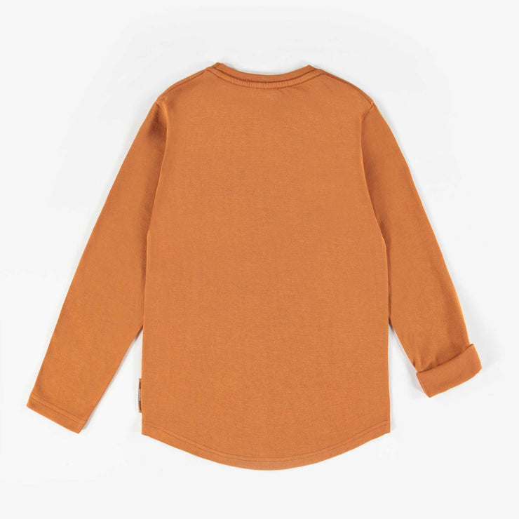 T-shirt rouille à manches longues || Rust Long-sleeve T-shirts