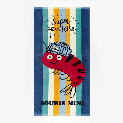 Serviette de plage, garçon || Beach Towel, Boy