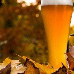 Autumn Home Brewing