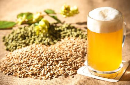 Popular Beer Additives and Chemicals