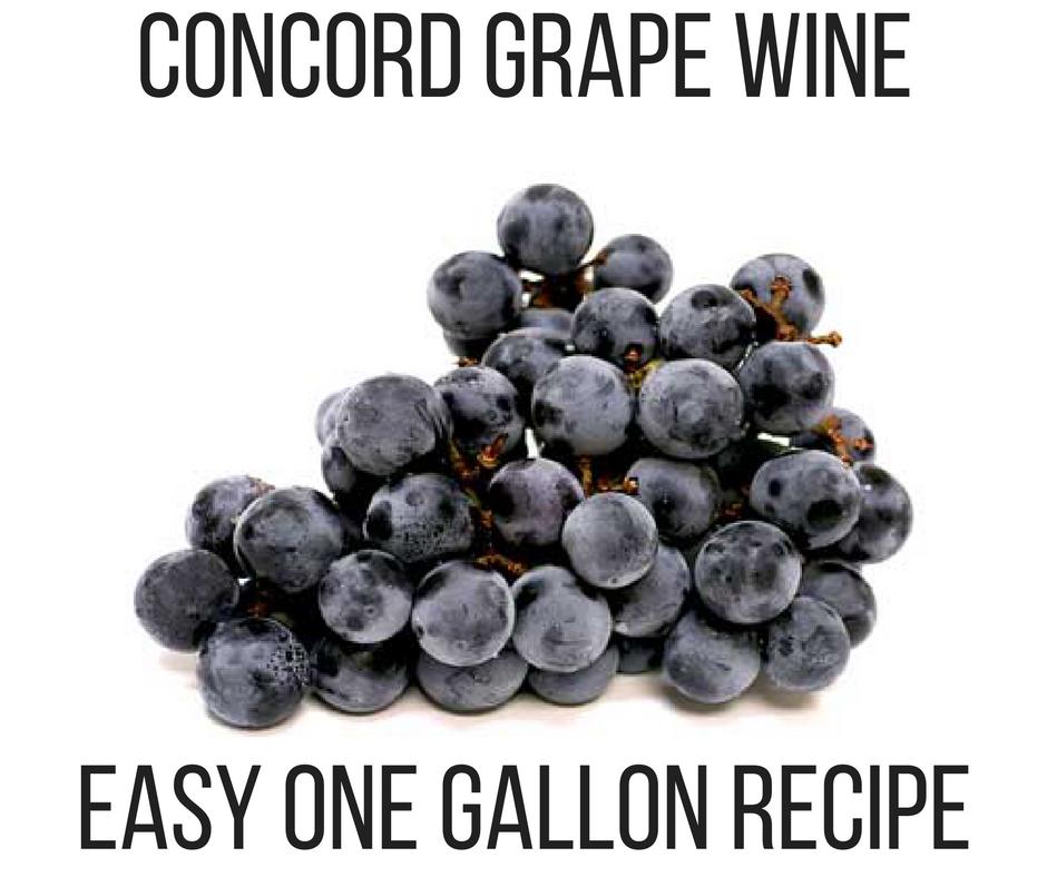 Concord Grape Wine Recipe