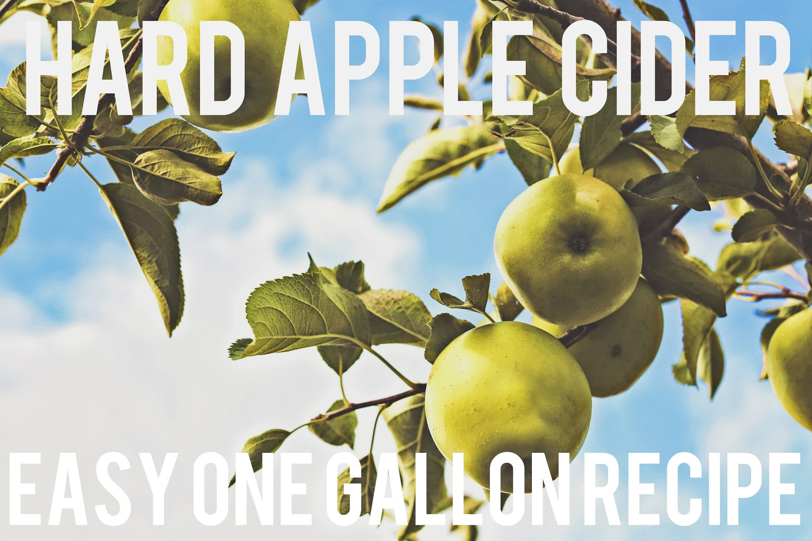 Hard Apple Cider Recipe