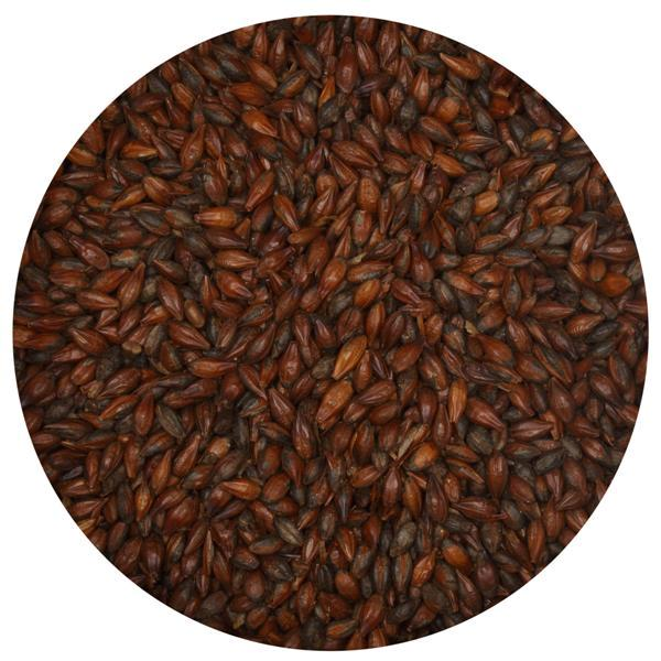 Roasted Barley - Muntons (English) - 55 Lb.