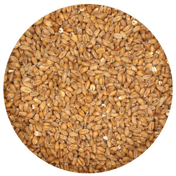 Weyermann Oak Smoked Wheat Malt - 1 Lb.