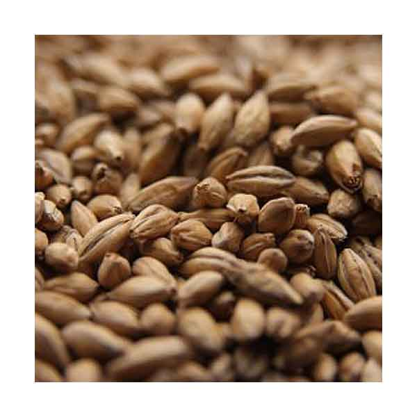 Rahr Standard 6-Row Malt - 50 Lb. - Whole