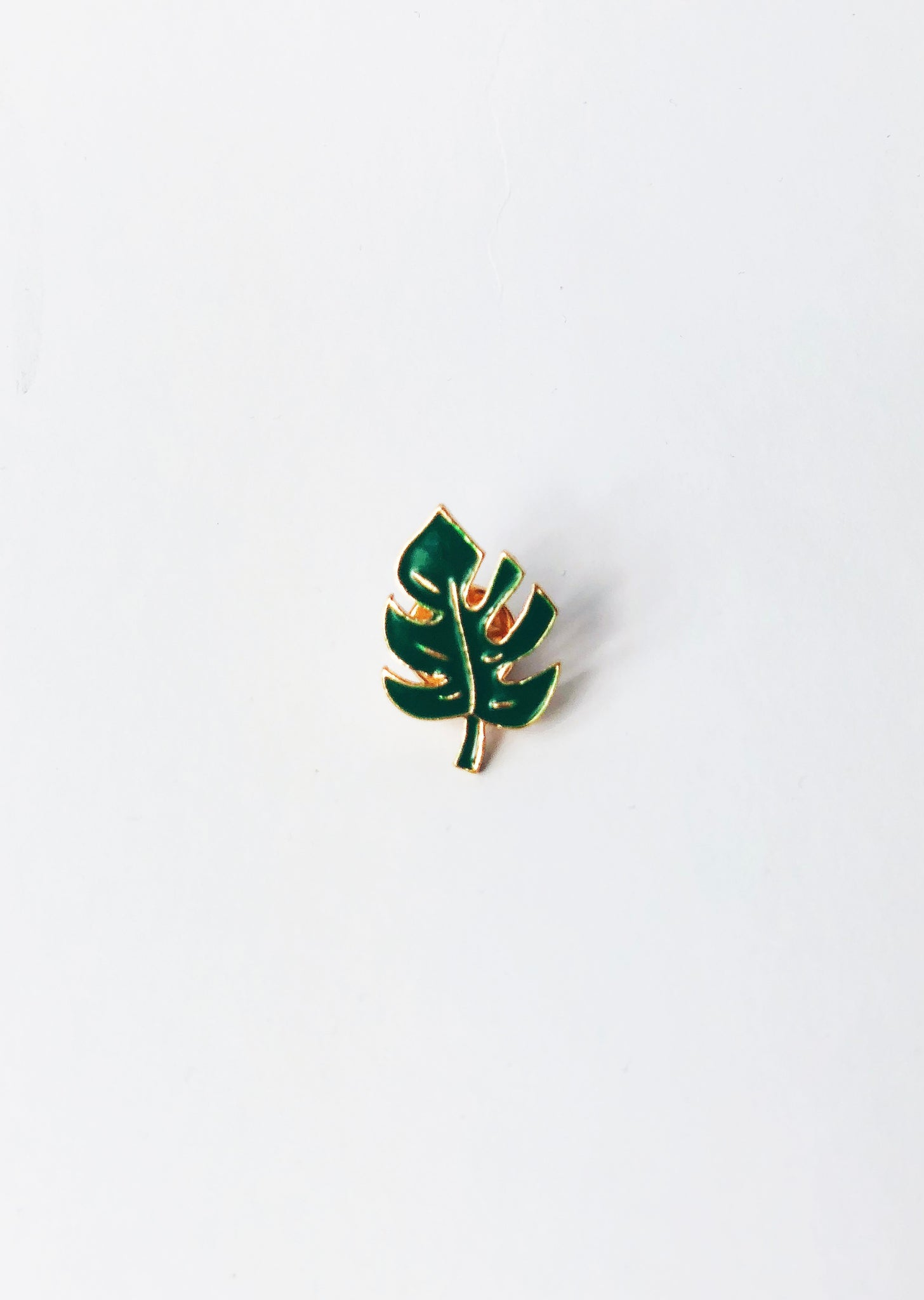 Pin – Monstera leaf
