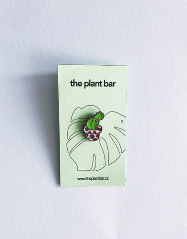 Pin – Cactus Katty