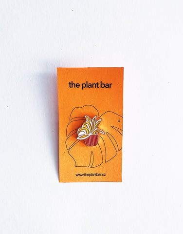 Pin – Plant Jerry