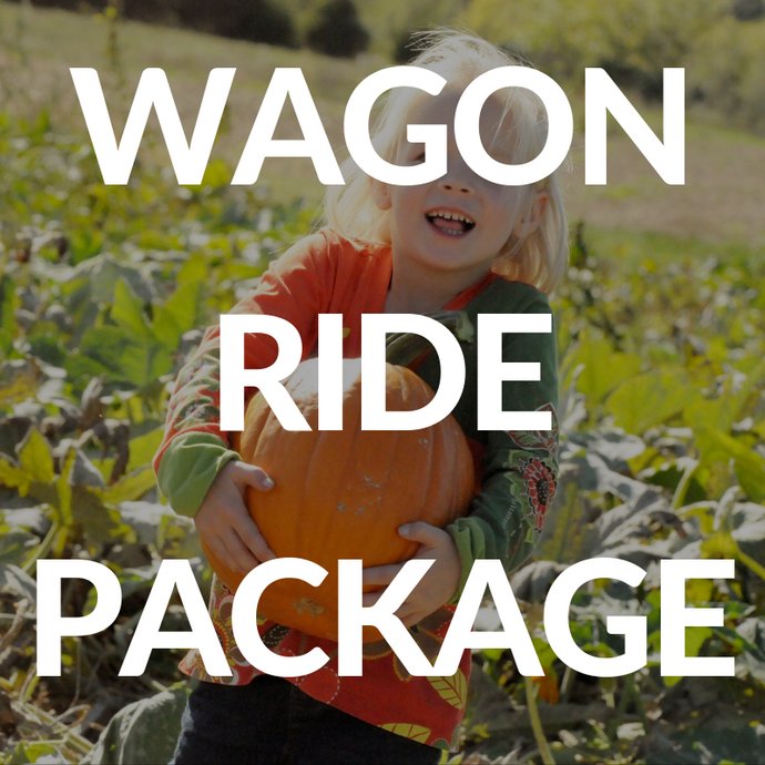 Single Day Wagon Ride Package