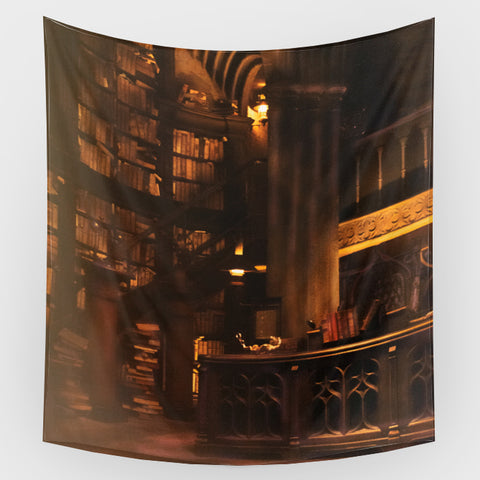 Harry Potter - Hogwarts 2 Backdrop