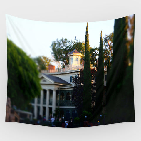 Haunted Mansion - Haunted Mansion Exterior 1 Backdrop