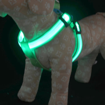 Pet Dog LED Light Chest Strap Collars Puppy Doggy Safety Nylon Luminous Belt Harnesses