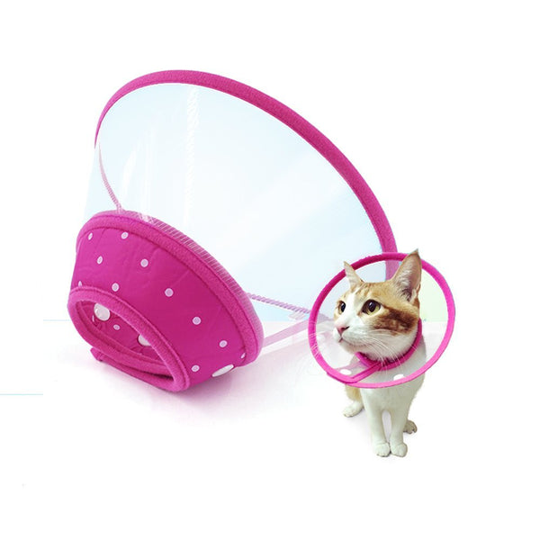 Adjustable Recovery Pet Collar Cone - Collar - Molly Brands - Molly Brands