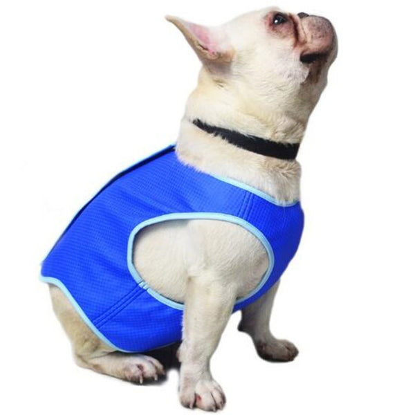 Pet Cooling Jacket Dog Ice-cooling Harness Pet Mesh Vest with Magic Tape - Fashion - Molly Brands - Molly Brands