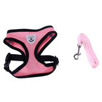 Pet Products Dog Harness With Leash Leads Dog-Collar Breathable Mesh Vest Pet accessories - Walking - Molly Brands - Molly Brands