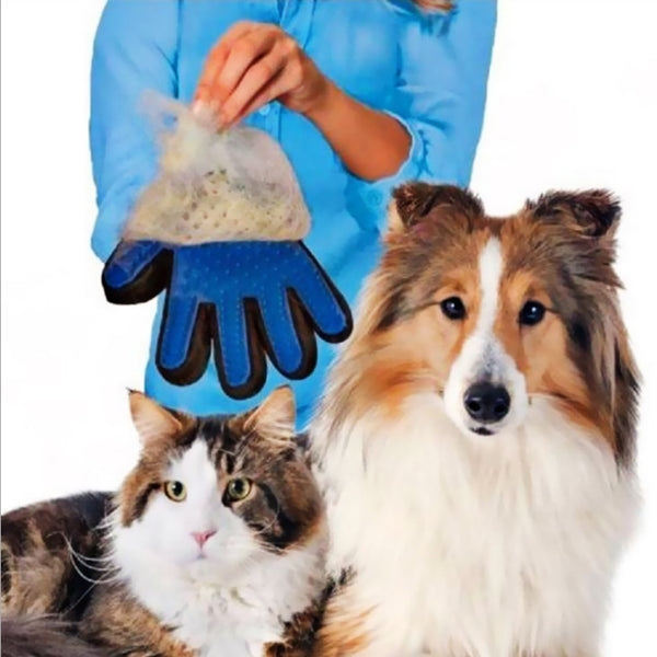 Pet Hair Remover Glove(Right Hand 1 Pc) -  - Molly Brands - Molly Brands