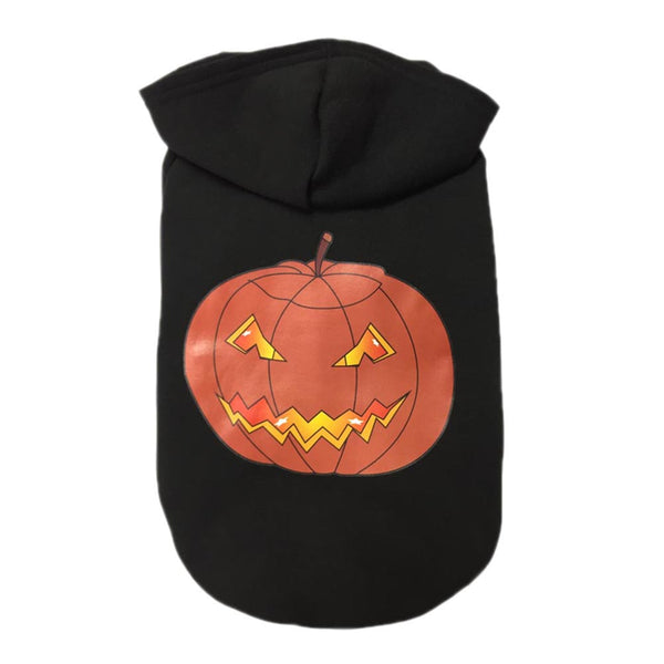 New Lovely Pet Dog Clothes Halloween Costume Pet Spider Coat - Fashion - Molly Brands - Molly Brands