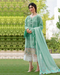 Green Color Cotton Lawn Pakistani Palazzo Suits (Made in India)