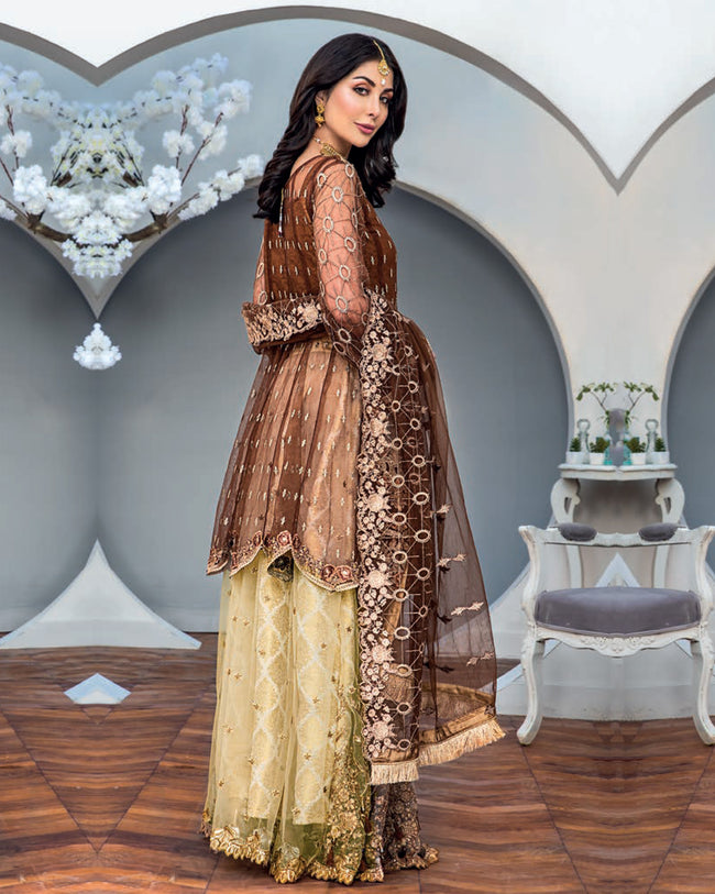 Maryam's Gold Luxury Embroidered Chiffon Collection Vol 6 MG-67 - 100% Original Pakistani Suit