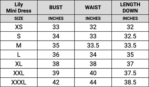 Lily mini dress size guide