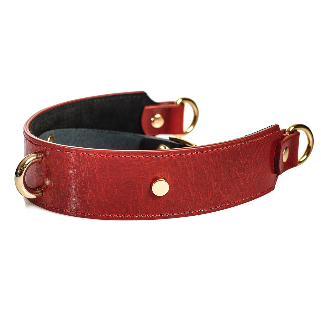 "Collar & Leash ""Volcano"""