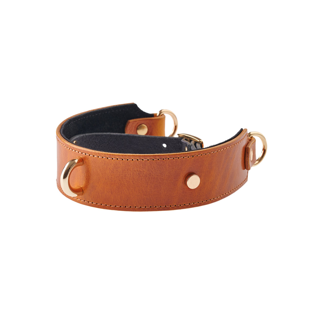 "Collar & Leash ""Amber"""