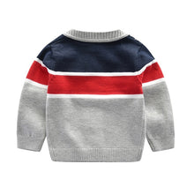 Load image into Gallery viewer, Oxford Sweater