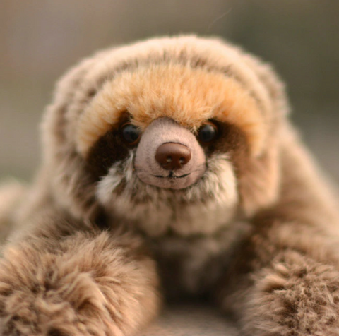 Cute Sloth Toy