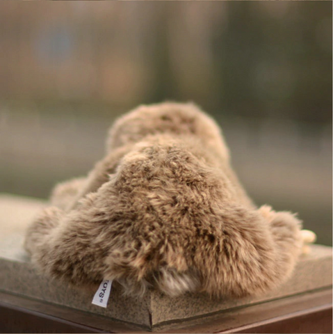 Image of Cute Sloth Toy