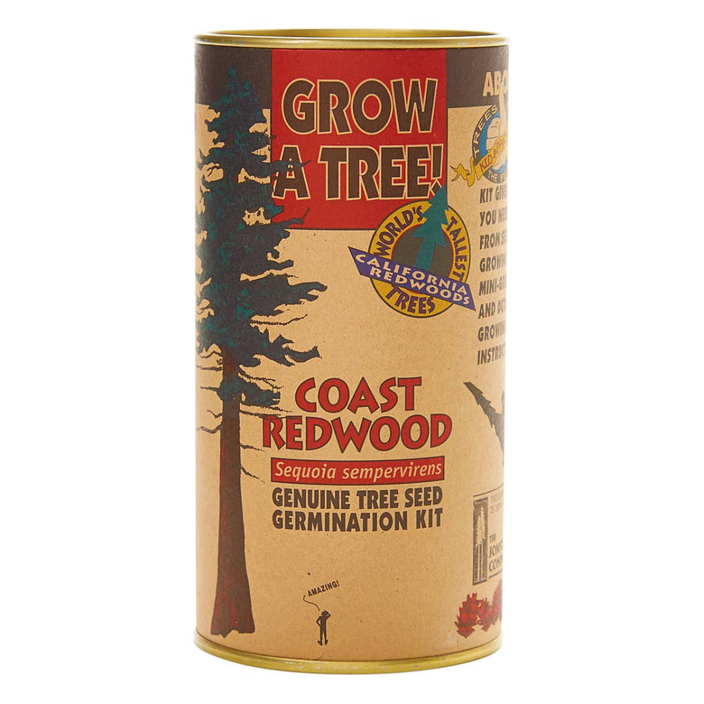 Coast Redwood | Seed Grow Kit
