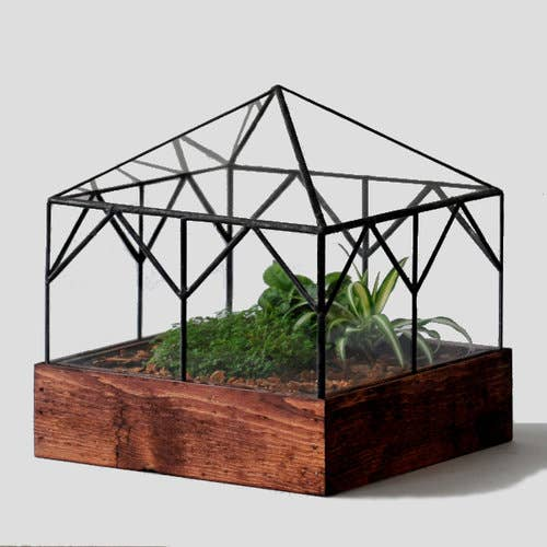 Cottage Glass Terrarium