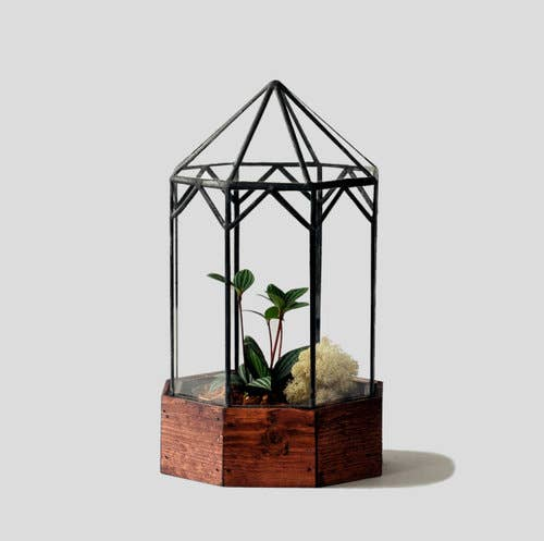Gazebo Glass Terrarium