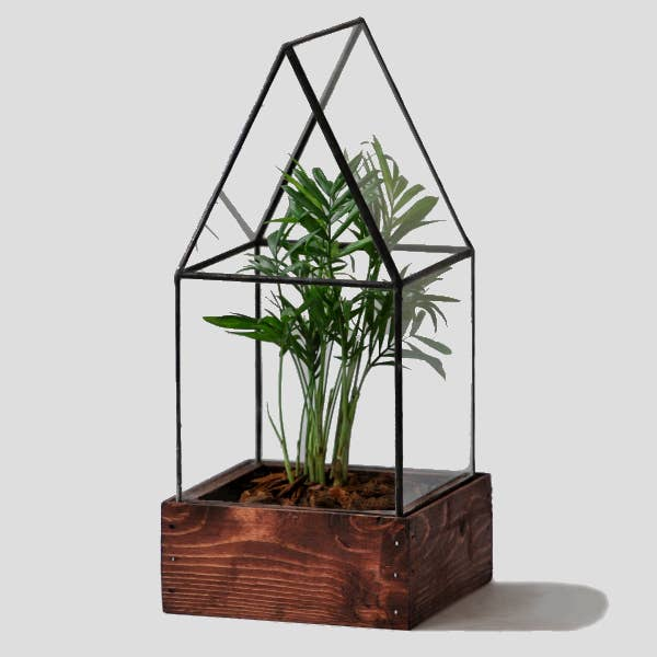Cape Cod Glass Terrarium