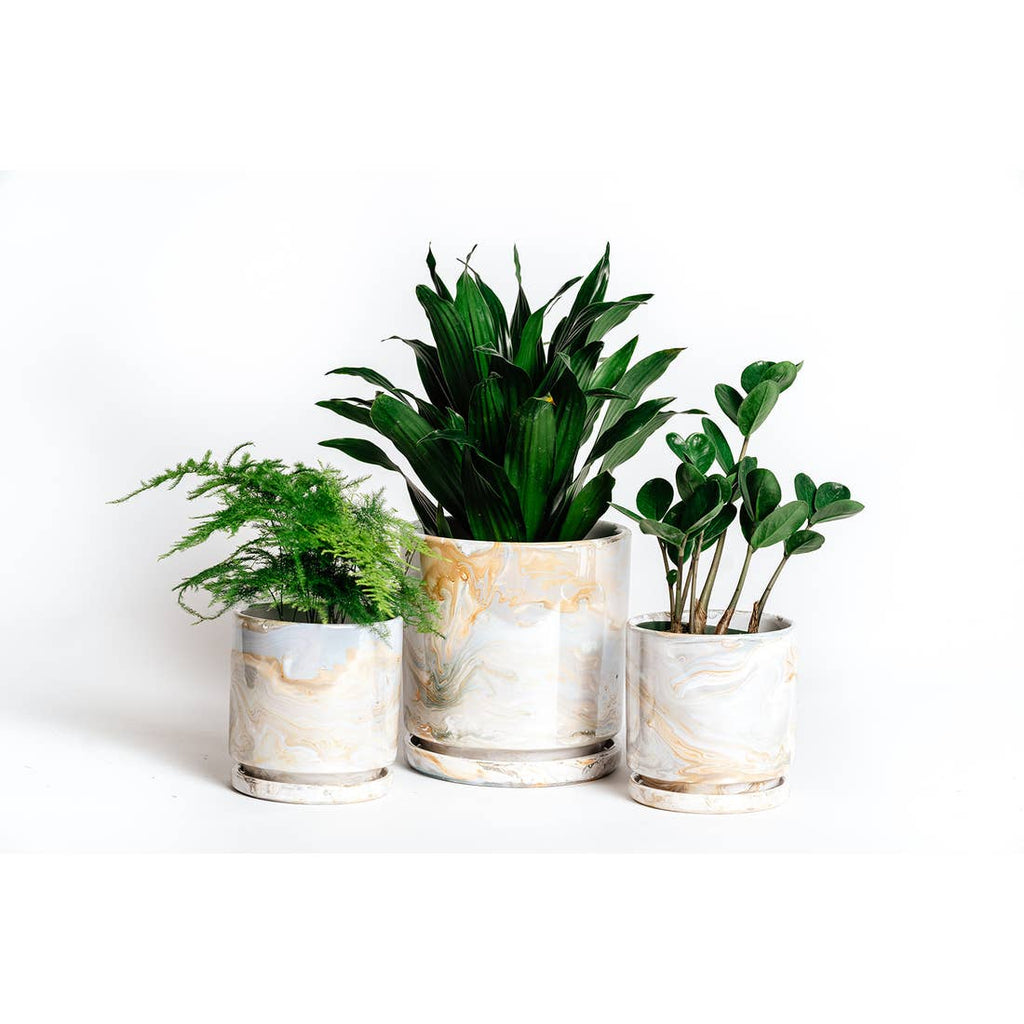 4.5in & 6.5in Marble Cylinder Pots with Water Tray