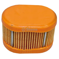 Air Filter Briggs & Stratton 790166 (Stens 100-834)