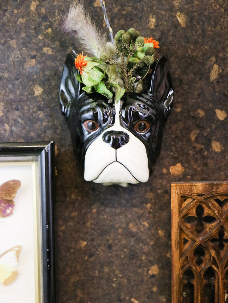 Small french bulldog wallvase