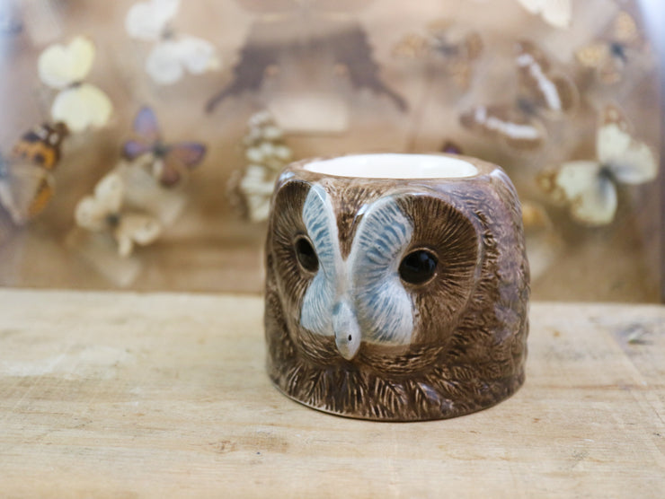 Tawny owl small cup