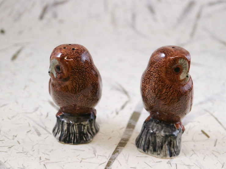 Tawny owl salt & pepper shakers