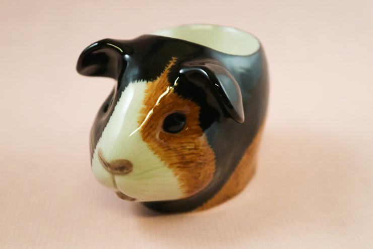Tortoise and white guinea pig small cup